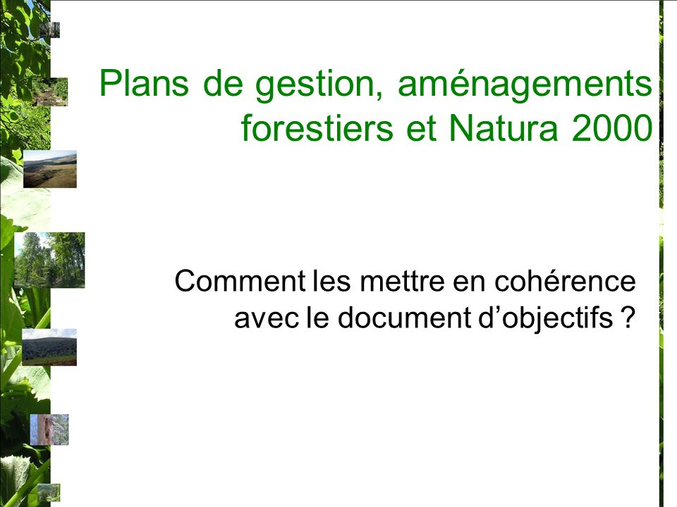 Plans de gestion, aménagements forestiers et Natura 2000 La France prône lintégration de Natura 2000 dans les politiques existantes.