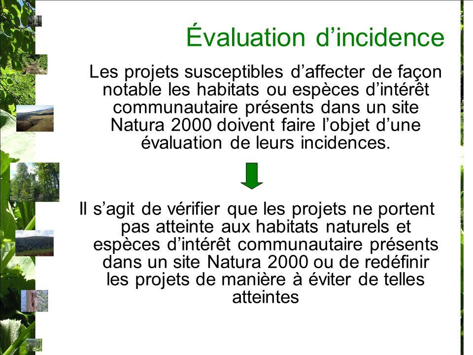 Évaluation dincidence Les projets susceptibles daffecter de façon notable les habitats ou espèces dintérêt communautaire présents dans un site Natura 2000 doivent faire lobjet dune évaluation de leurs incidences.