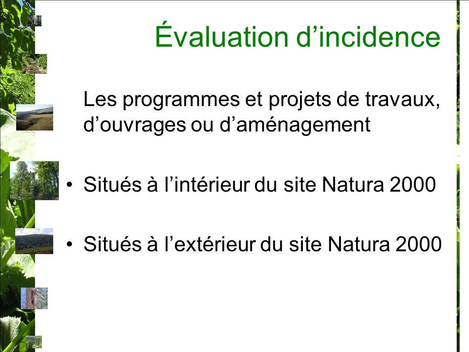 Évaluation dincidence Les programmes et projets de travaux, douvrages ou daménagement Situés à lintérieur du site Natura 2000 Situés à lextérieur du site Natura 2000