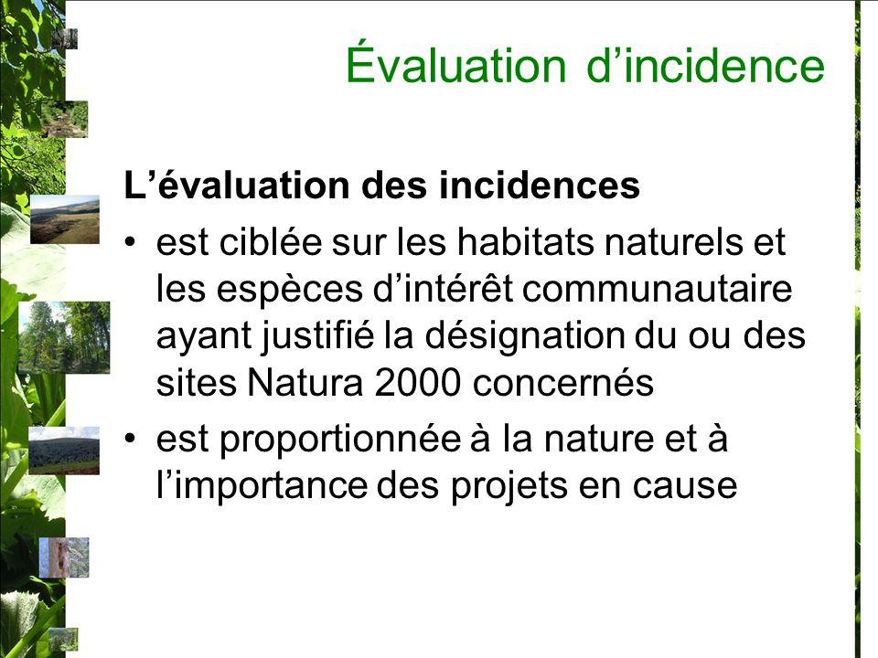 Évaluation dincidence Lévaluation des incidences est ciblée sur les habitats naturels et les espèces dintérêt communautaire ayant justifié la désignation du ou des sites Natura 2000 concernés est proportionnée à la nature et à limportance des projets en cause