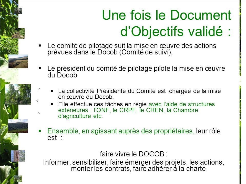 Une fois le Document dObjectifs validé : Le comité de pilotage suit la mise en œuvre des actions prévues dans le Docob (Comité de suivi), Le président du comité de pilotage pilote la mise en œuvre du Docob La collectivité Présidente du Comité est chargée de la mise en œuvre du Docob.
