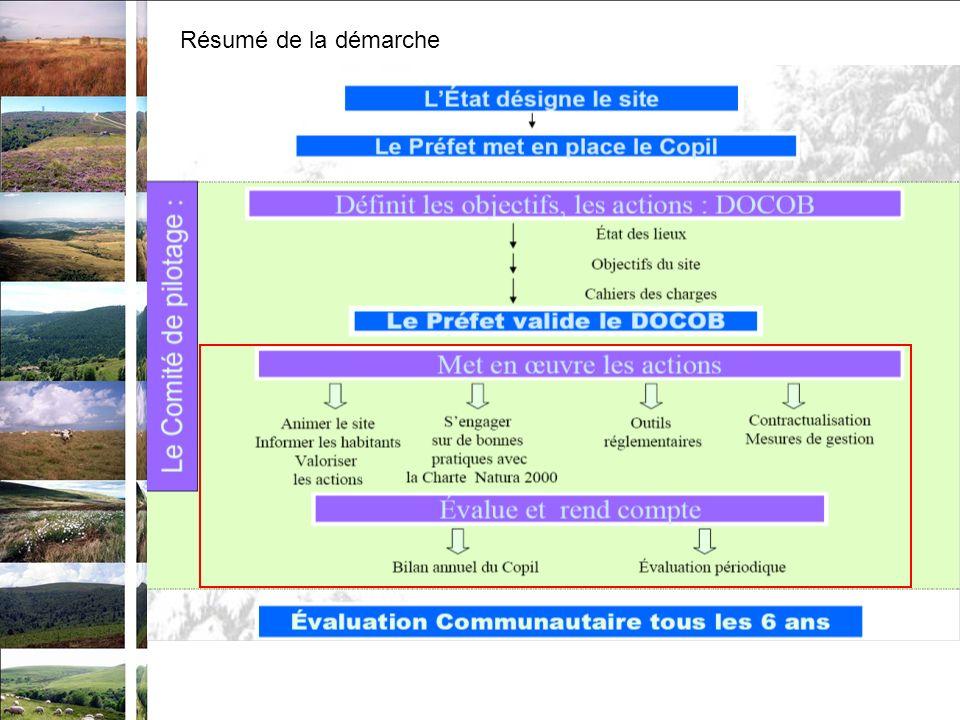 Pour la mise en œuvre du document dobjectifs Le rôle du comité de pilotage : –valide les propositions de contrats présentées par les demandeurs –valide lensemble des actions mises en œuvre sur le site –organise les activités sur le site –organise la révision du DOCOB