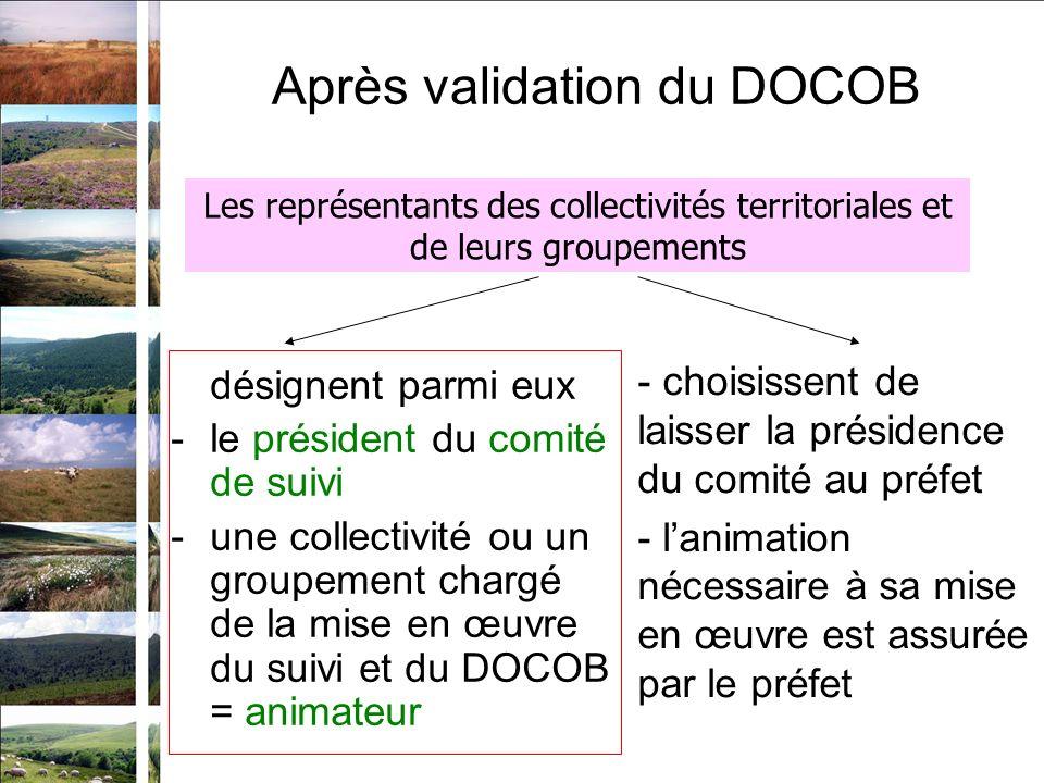 Après validation du DOCOB désignent parmi eux -le président du comité de suivi -une collectivité ou un groupement chargé de la mise en œuvre du suivi