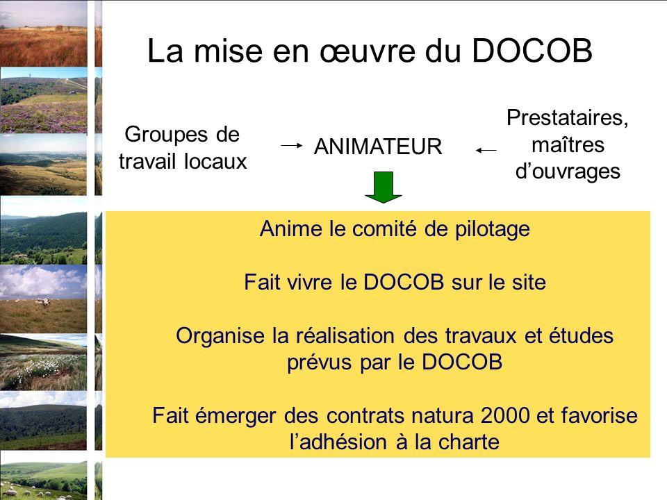 Prestataires, maîtres douvrages Anime le comité de pilotage Fait vivre le DOCOB sur le site Organise la réalisation des travaux et études prévus par l