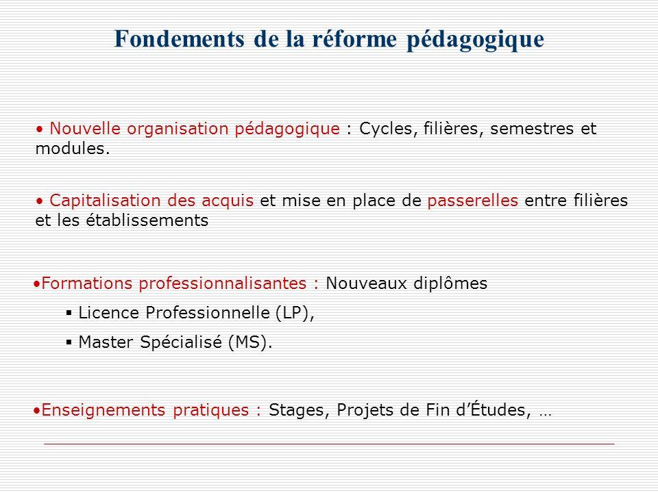 Fondements de la réforme pédagogique Nouvelle organisation pédagogique : Cycles, filières, semestres et modules. Capitalisation des acquis et mise en