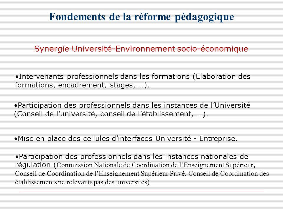 Fondements de la réforme pédagogique Intervenants professionnels dans les formations (Elaboration des formations, encadrement, stages, …). Participati