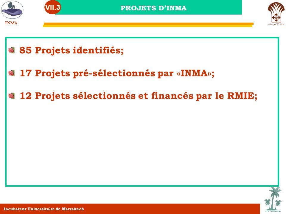 PROJETS DINMA VII.3 85 Projets identifiés; 17 Projets pré-sélectionnés par «INMA»; 12 Projets sélectionnés et financés par le RMIE; INMA Incubateur Un
