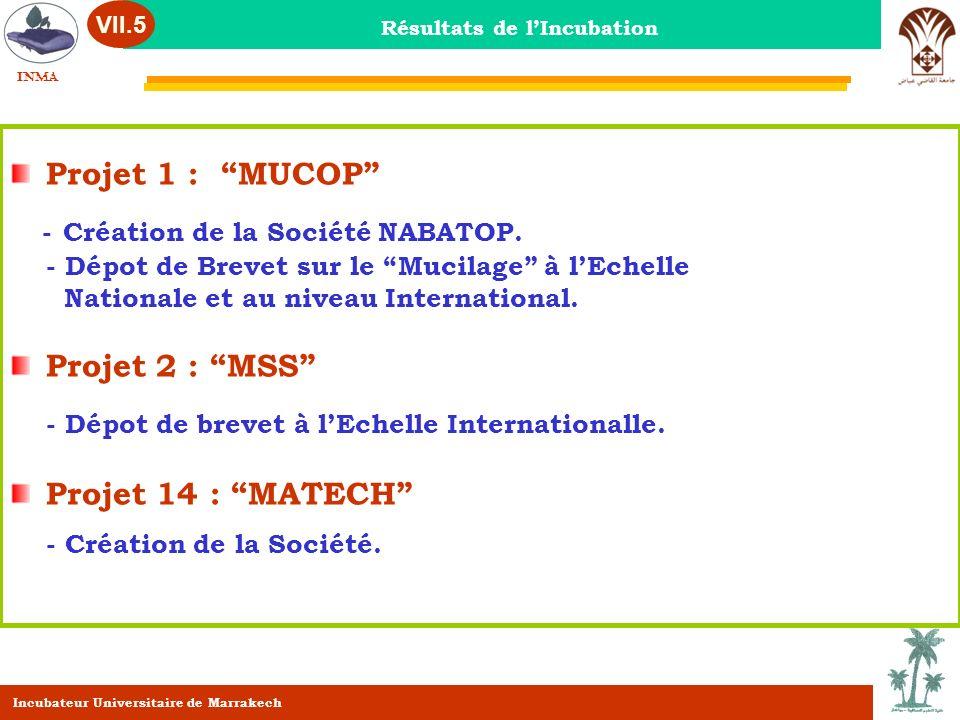 Projet 1 : MUCOP - Création de la Société NABATOP. - Dépot de Brevet sur le Mucilage à lEchelle Nationale et au niveau International. Projet 2 : MSS -