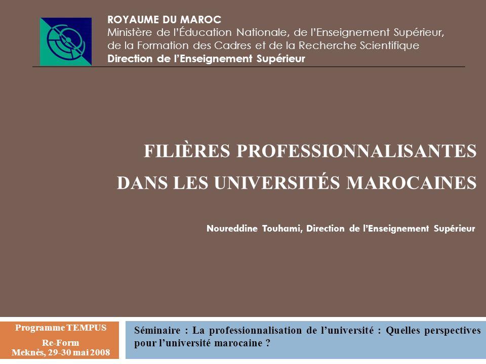 FILIÈRES PROFESSIONNALISANTES DANS LES UNIVERSITÉS MAROCAINES ROYAUME DU MAROC Ministère de lÉducation Nationale, de lEnseignement Supérieur, de la Fo