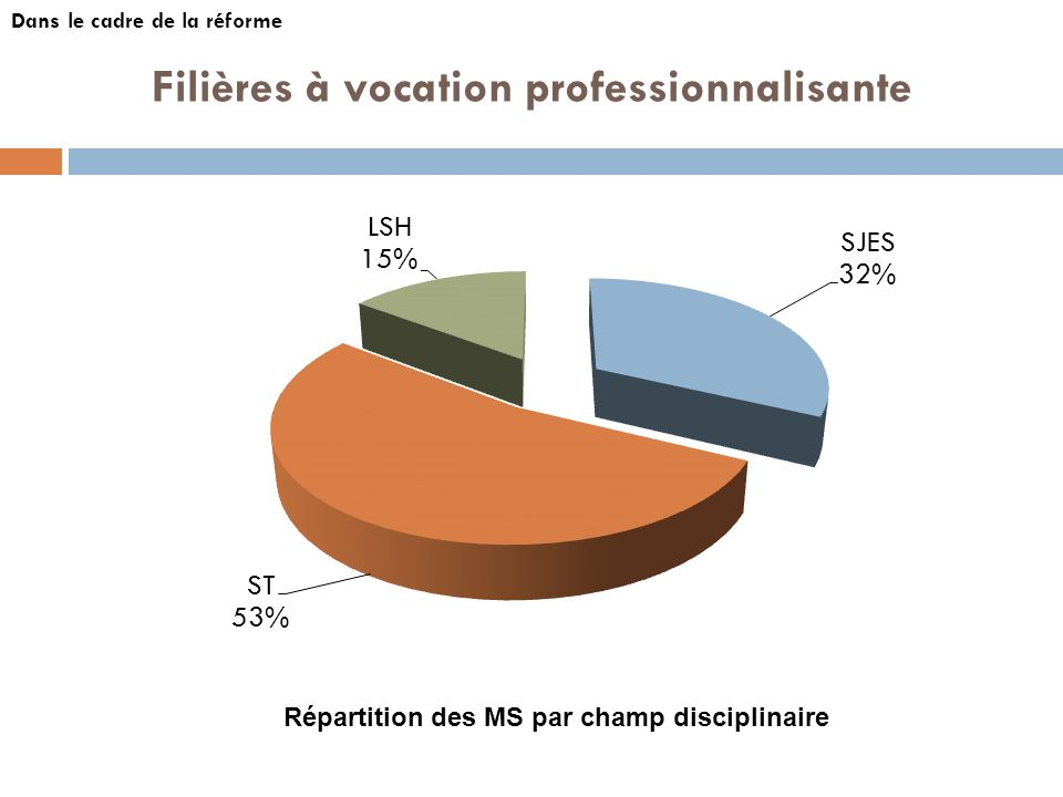 Filières à vocation professionnalisante Dans le cadre de la réforme Répartition des MS par champ disciplinaire