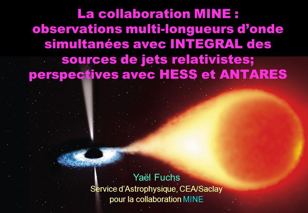 La collaboration MINE : observations multi-longueurs donde simultanées avec INTEGRAL des sources de jets relativistes; perspectives avec HESS et ANTAR