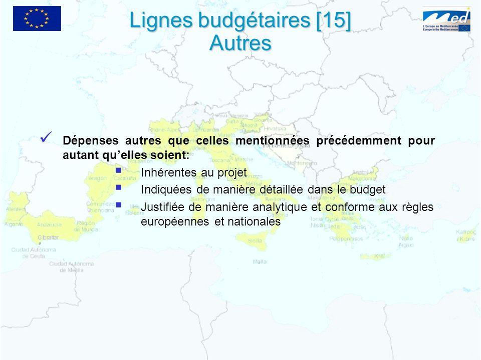 Dépenses autres que celles mentionnées précédemment pour autant quelles soient: Inhérentes au projet Indiquées de manière détaillée dans le budget Justifiée de manière analytique et conforme aux règles européennes et nationales Lignes budgétaires [15] Autres