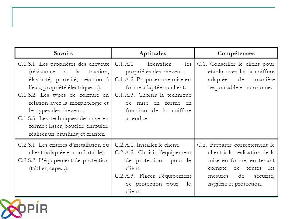 SavoirsAptitudesCompétences C.1.S.1.