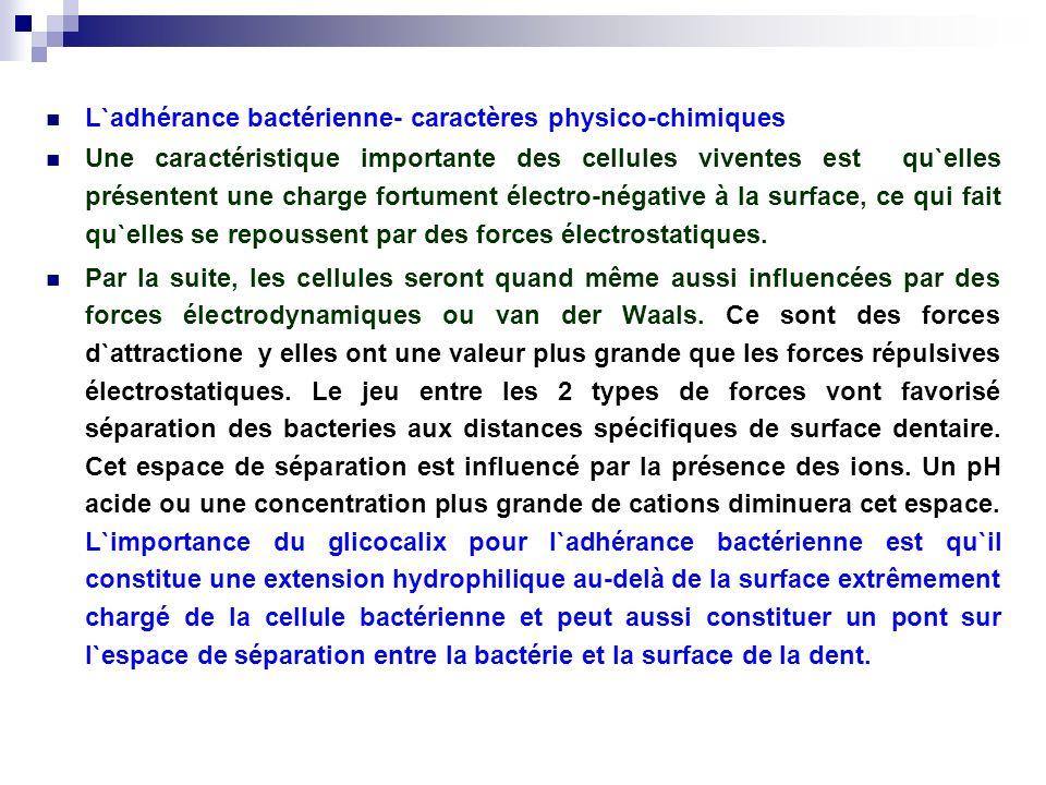 L`adhérance bactérienne- caractères physico-chimiques Une caractéristique importante des cellules viventes est qu`elles présentent une charge fortumen