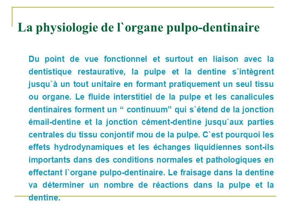 La physiologie de l`organe pulpo-dentinaire Du point de vue fonctionnel et surtout en liaison avec la dentistique restaurative, la pulpe et la dentine