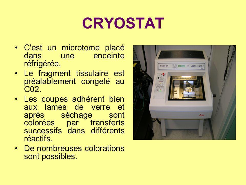 CRYOSTAT C'est un microtome placé dans une enceinte réfrigérée. Le fragment tissulaire est préalablement congelé au C02. Les coupes adhèrent bien aux