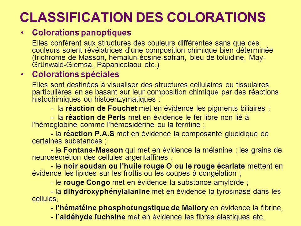 CLASSIFICATION DES COLORATIONS Colorations panoptiques Elles confèrent aux structures des couleurs différentes sans que ces couleurs soient révélatric