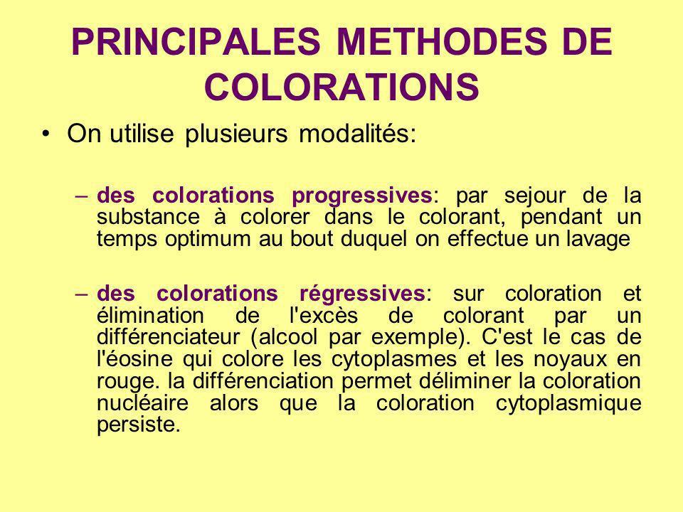 PRINCIPALES METHODES DE COLORATIONS On utilise plusieurs modalités: –des colorations progressives: par sejour de la substance à colorer dans le colora