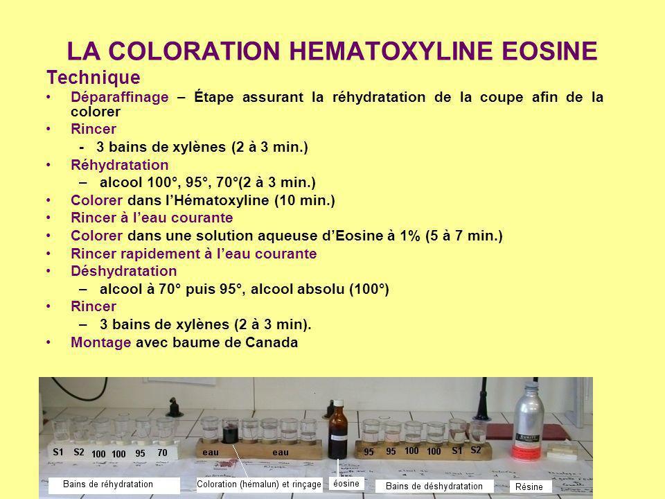 LA COLORATION HEMATOXYLINE EOSINE Technique Déparaffinage – Étape assurant la réhydratation de la coupe afin de la colorer Rincer - 3 bains de xylènes