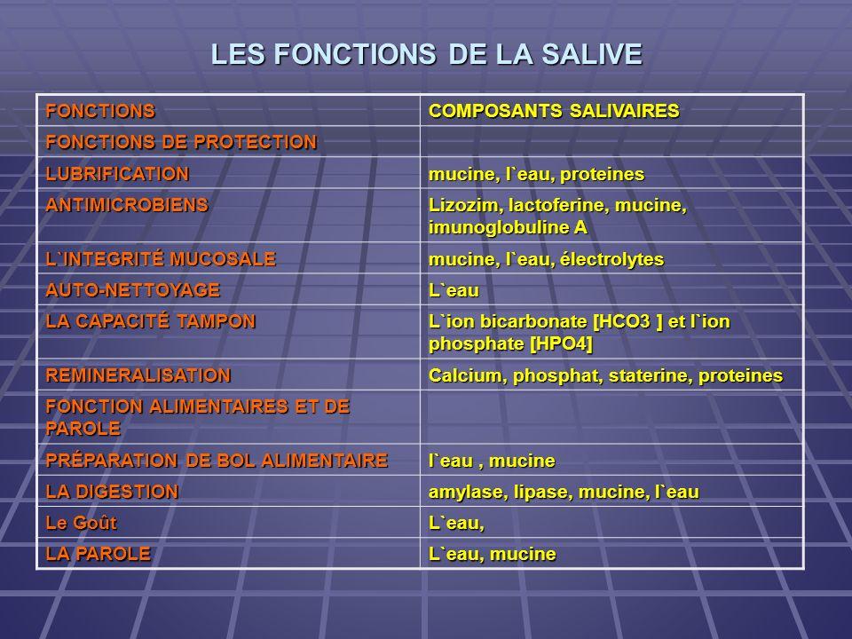 LES FONCTIONS DE LA SALIVE FONCTIONS COMPOSANTS SALIVAIRES FONCTIONS DE PROTECTION LUBRIFICATION mucine, l`eau, proteines ANTIMICROBIENS Lizozim, lact