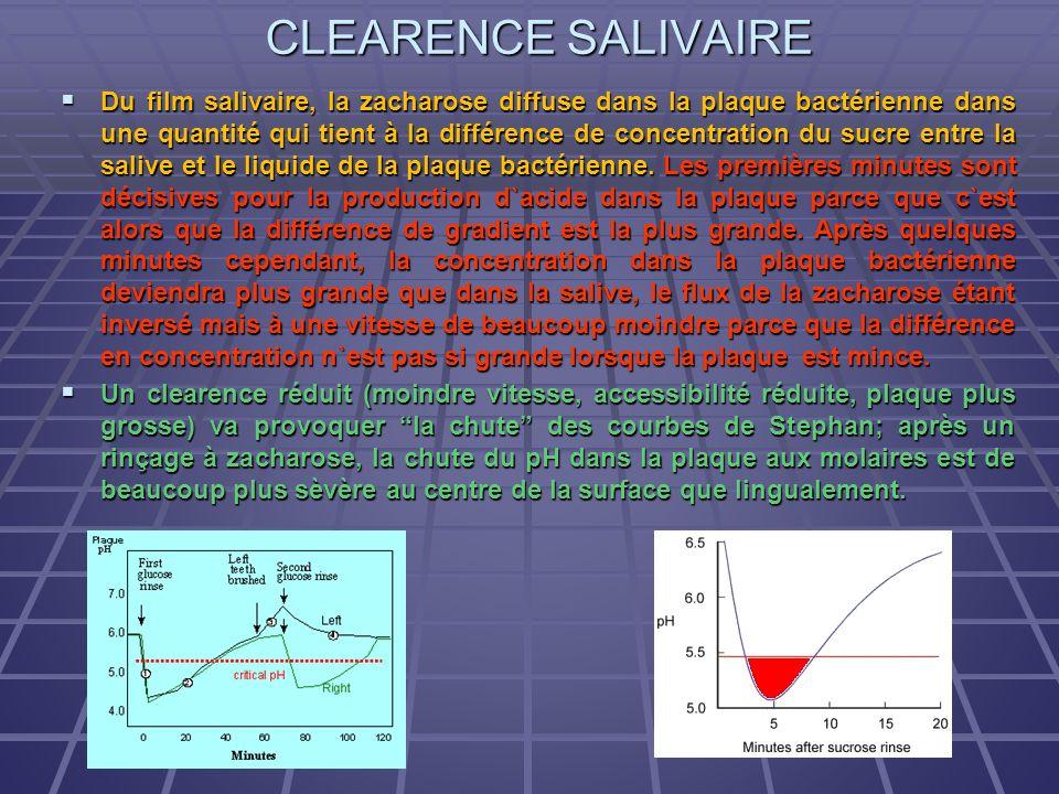CLEARENCE SALIVAIRE Du film salivaire, la zacharose diffuse dans la plaque bactérienne dans une quantité qui tient à la différence de concentration du