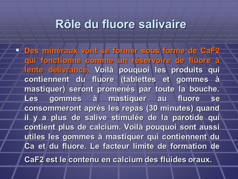 Rôle du fluore salivaire Des minéraux vont se former sous forme de CaF2 qui fonctionne comme un réservoire de fluore à lente délivrance. Voilà pouquoi