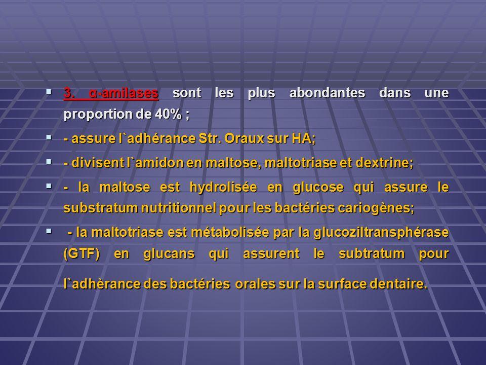 3. α-amilases sont les plus abondantes dans une proportion de 40% ; 3. α-amilases sont les plus abondantes dans une proportion de 40% ; - assure l`adh