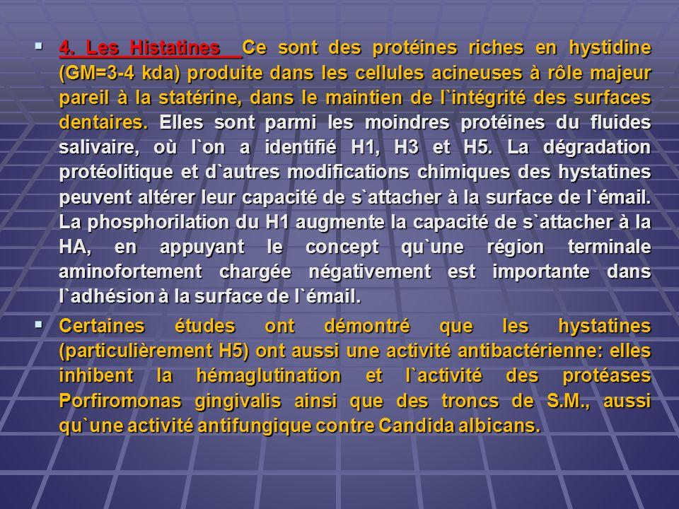 4. Les Histatines Ce sont des protéines riches en hystidine (GM=3-4 kda) produite dans les cellules acineuses à rôle majeur pareil à la statérine, dan