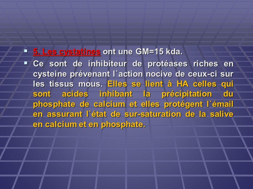 5. Les cystatines ont une GM=15 kda. 5. Les cystatines ont une GM=15 kda. Ce sont de inhibiteur de protéases riches en cysteine prévenant l`action noc