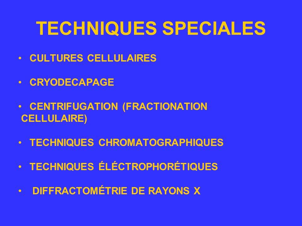 TECHNIQUES CHROMATOGRAPHIQUES (APLICATION PRATIQUES) La chromatographie sur papier –La chromatographie sur papier est une technique de chromatographie en phase liquide.