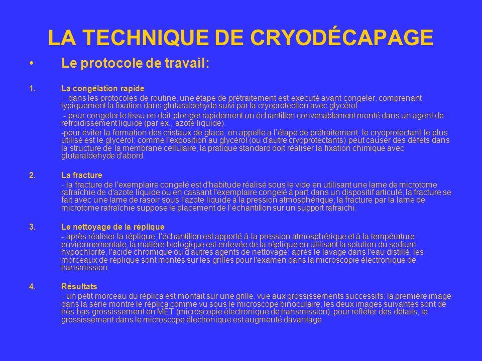 LA TECHNIQUE DE CRYODÉCAPAGE Détails sur le protocole de travail Etapes de la technique de cryodécapage