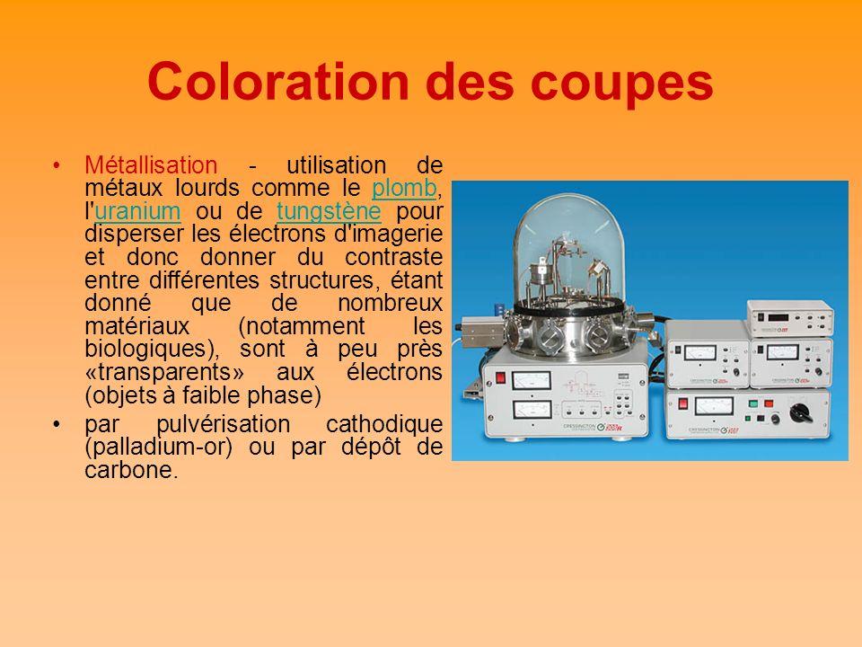 Coloration des coupes Métallisation - utilisation de métaux lourds comme le plomb, l'uranium ou de tungstène pour disperser les électrons d'imagerie e