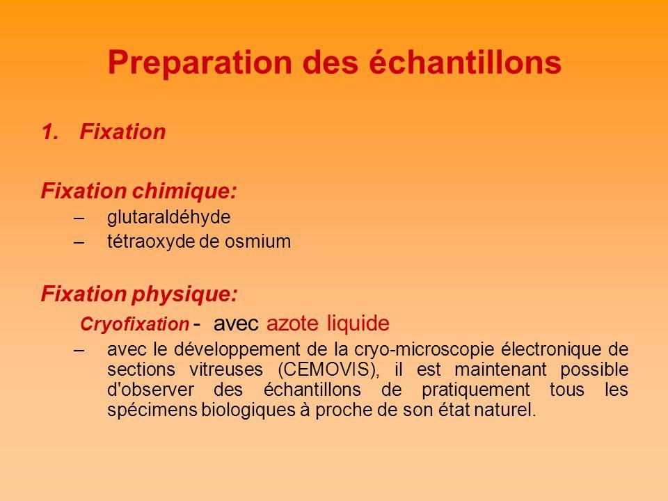 Preparation des échantillons 1.Fixation Fixation chimique: –glutaraldéhyde –tétraoxyde de osmium Fixation physique: Cryofixation - avec azote liquide