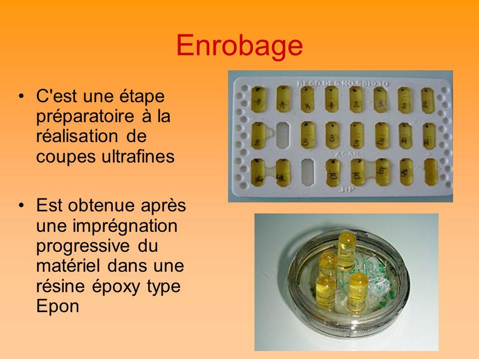 Enrobage C'est une étape préparatoire à la réalisation de coupes ultrafines Est obtenue après une imprégnation progressive du matériel dans une résine