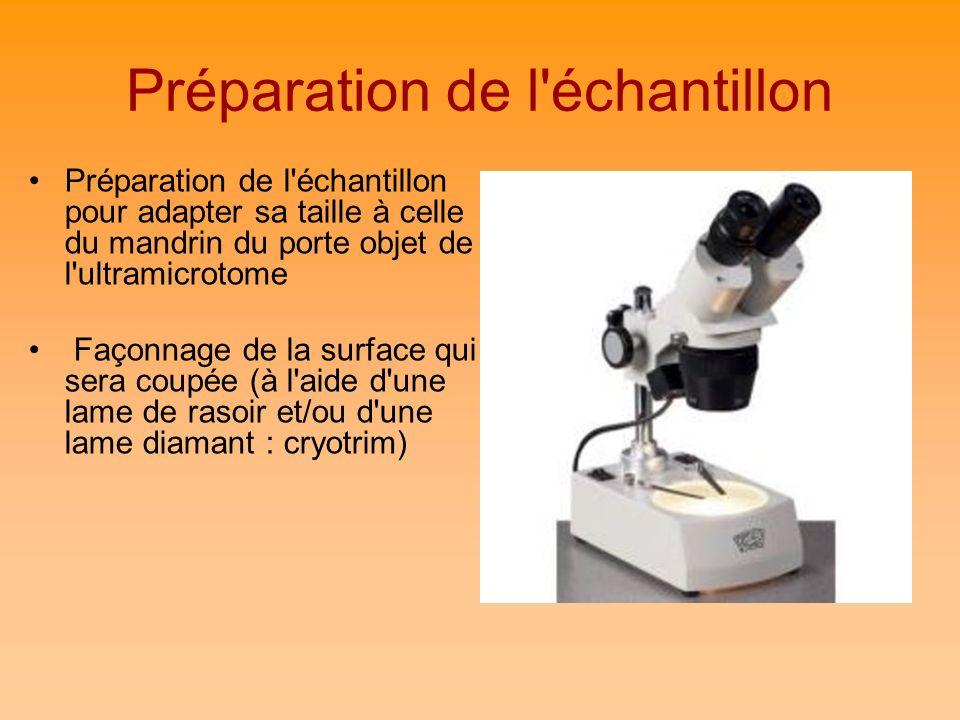 Préparation de l'échantillon Préparation de l'échantillon pour adapter sa taille à celle du mandrin du porte objet de l'ultramicrotome Façonnage de la
