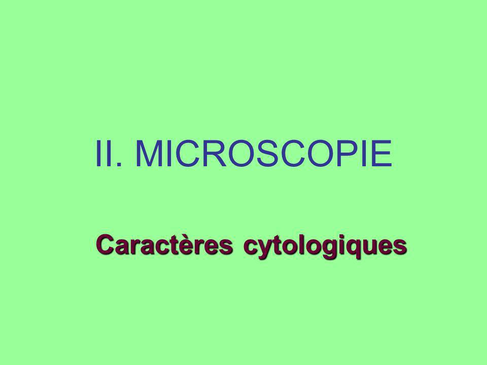 II. MICROSCOPIE Caractères cytologiques
