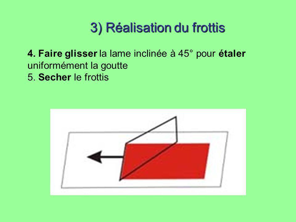 3) Réalisation du frottis 4. Faire glisser la lame inclinée à 45° pour étaler uniformément la goutte 5. Secher le frottis