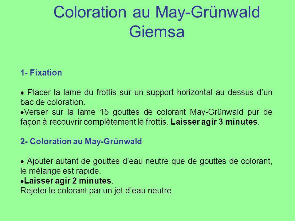 3- Coloration au Giemsa Préparer la dilution du Giemsa pendant les 3 minutes précédentes : pour cela introduire 20 cm3 deau neutre dans une éprouvette graduée, ajouter 30 gouttes de colorant de telle manière que celui-ci reste à la surface de leau neutre.