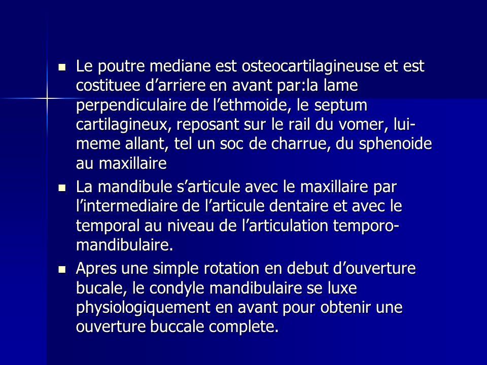 Le poutre mediane est osteocartilagineuse et est costituee darriere en avant par:la lame perpendiculaire de lethmoide, le septum cartilagineux, reposa