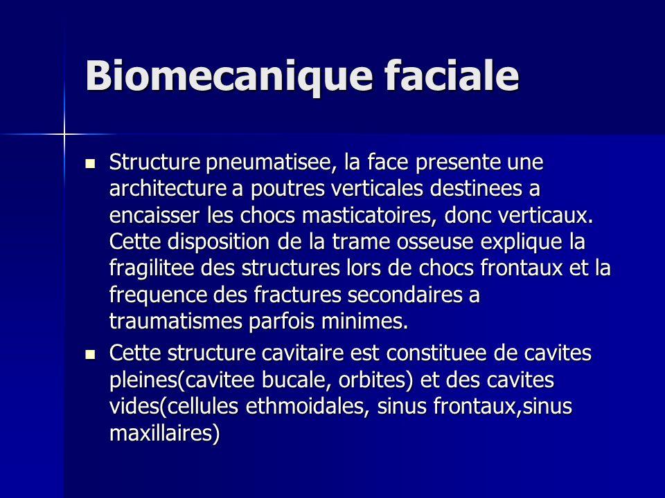 Biomecanique faciale Structure pneumatisee, la face presente une architecture a poutres verticales destinees a encaisser les chocs masticatoires, donc