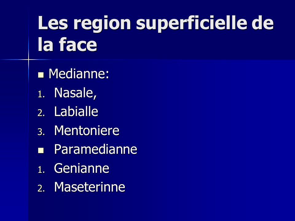 Les region superficielle de la face Medianne: Medianne: 1. Nasale, 2. Labialle 3. Mentoniere Paramedianne Paramedianne 1. Genianne 2. Maseterinne