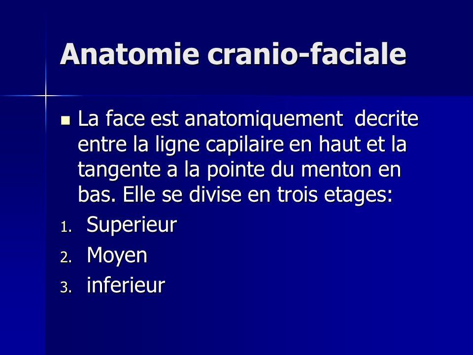 Anatomie cranio-faciale La face est anatomiquement decrite entre la ligne capilaire en haut et la tangente a la pointe du menton en bas. Elle se divis