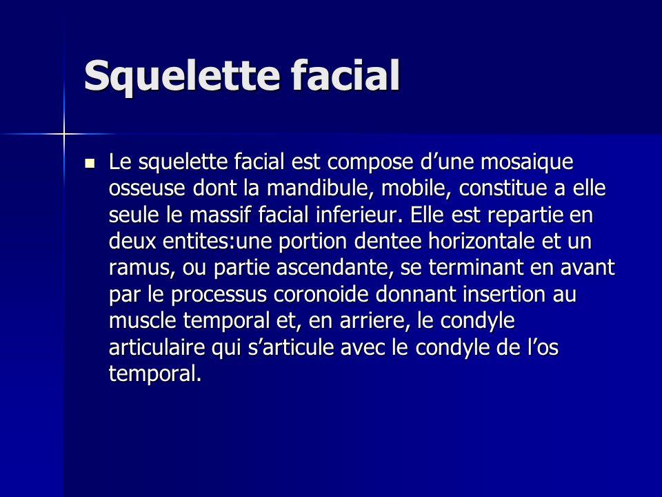 Squelette facial Le squelette facial est compose dune mosaique osseuse dont la mandibule, mobile, constitue a elle seule le massif facial inferieur. E