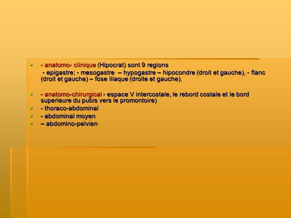- anatomo- clinique (Hipocrat) sont 9 regions - anatomo- clinique (Hipocrat) sont 9 regions - epigastre; - mesogastre – hypogastre – hipocondre (droit