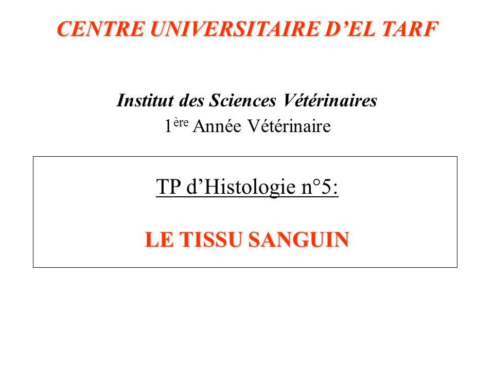 CENTRE UNIVERSITAIRE DEL TARF LE TISSU SANGUIN CENTRE UNIVERSITAIRE DEL TARF Institut des Sciences Vétérinaires 1 ère Année Vétérinaire TP dHistologie