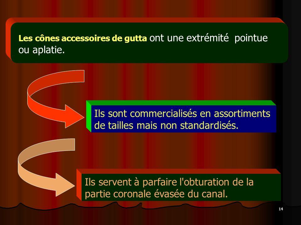 14 Les cônes accessoires de gutta ont une extrémité pointue ou aplatie. Ils sont commercialisés en assortiments de tailles mais non standardisés. Ils