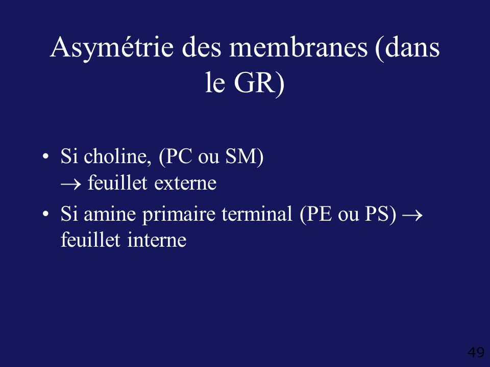 49 Asymétrie des membranes (dans le GR) Si choline, (PC ou SM) feuillet externe Si amine primaire terminal (PE ou PS) feuillet interne