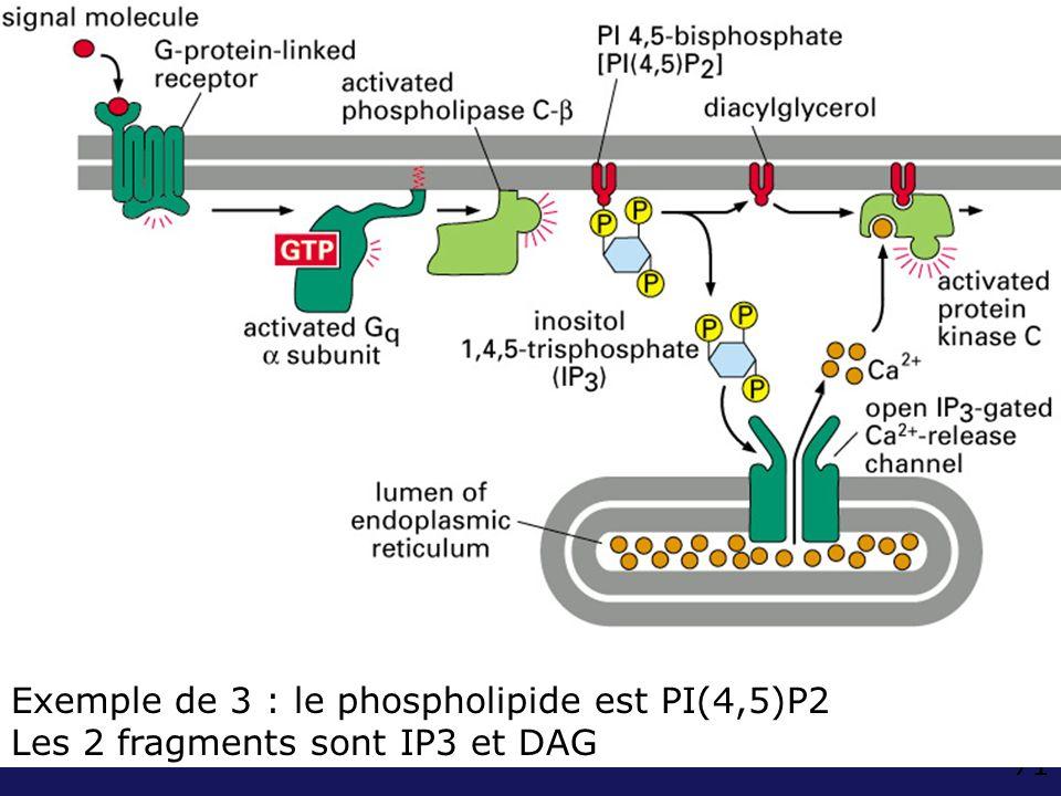 71 Fig 15-36 exemple de 10-15 (B) PIP2 DAG Exemple de 3 : le phospholipide est PI(4,5)P2 Les 2 fragments sont IP3 et DAG