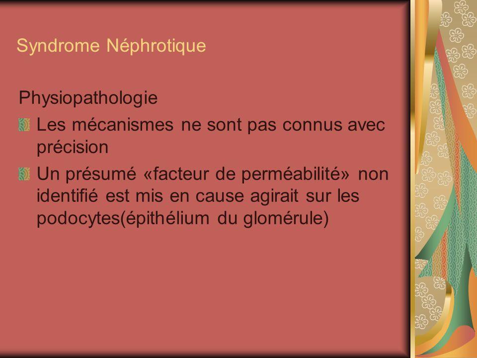 Syndrome Néphrotique Physiopathologie Les mécanismes ne sont pas connus avec précision Un présumé «facteur de perméabilité» non identifié est mis en cause agirait sur les podocytes(épithélium du glomérule)