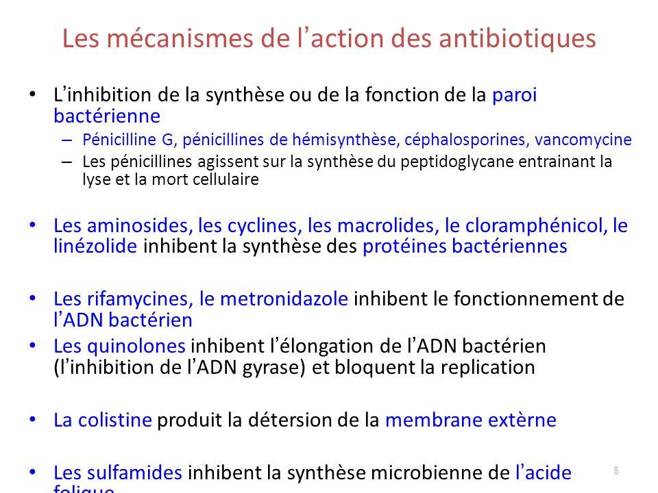 Les mécanismes de l action des antibiotiques L inhibition de la synthèse ou de la fonction de la paroi bactérienne – Pénicilline G, pénicillines de hé